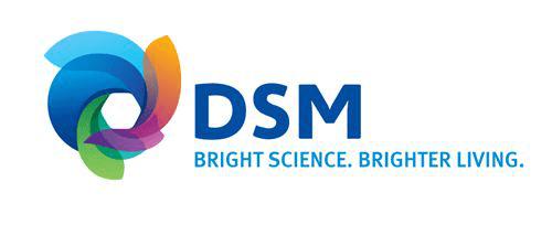 25KG aluminum foil bag for DSM